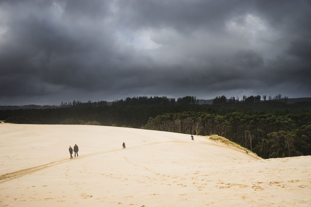 Located 11 km north of Strahan is Henty Dunes. A mass of sand dunes, ideal for walking or Tobogganing. Also make sure you check the weather forecast before head, tobogganing in a raining day might be a disaster.