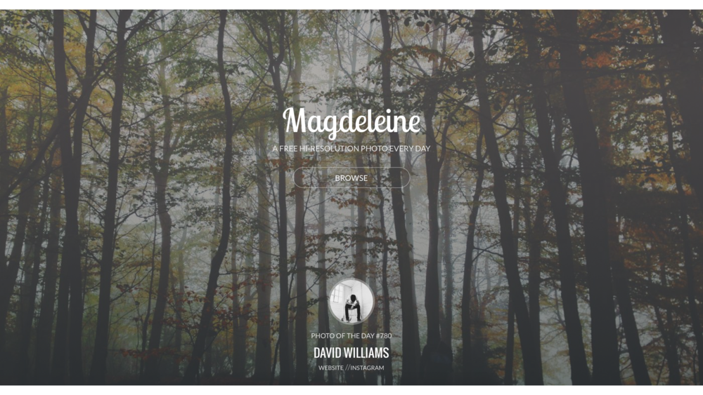Magdeleine 可依照顏色挑選,全都是攝影師拍攝上傳的高畫質圖片