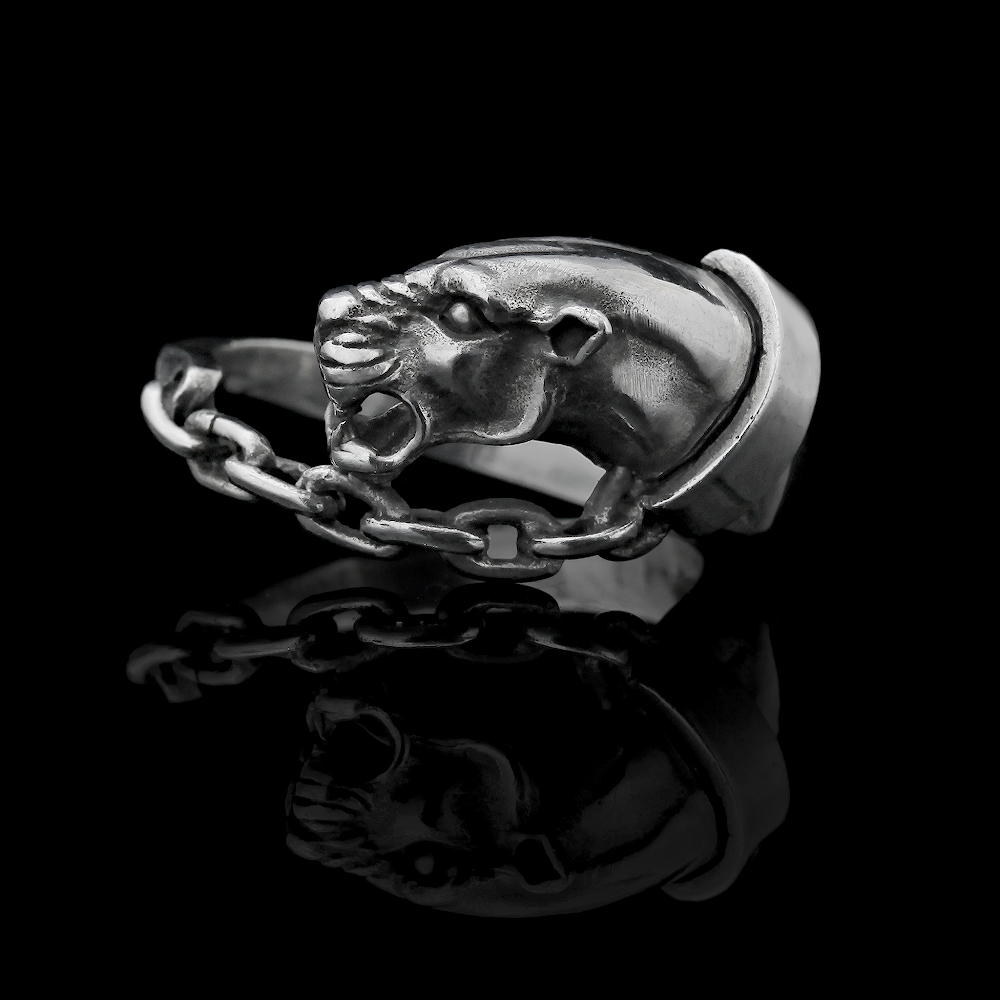 Sterling Silver Sculpture Ring by AVprophoto