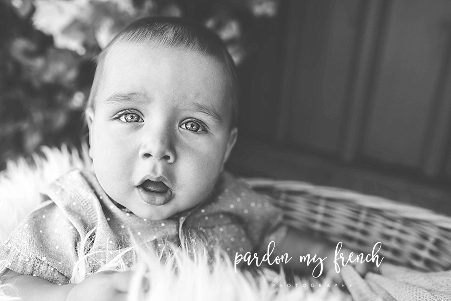 Adelaide Lifestyle Photographer. Adelaide Family photographer. Pardon my French Photography 1.jpg