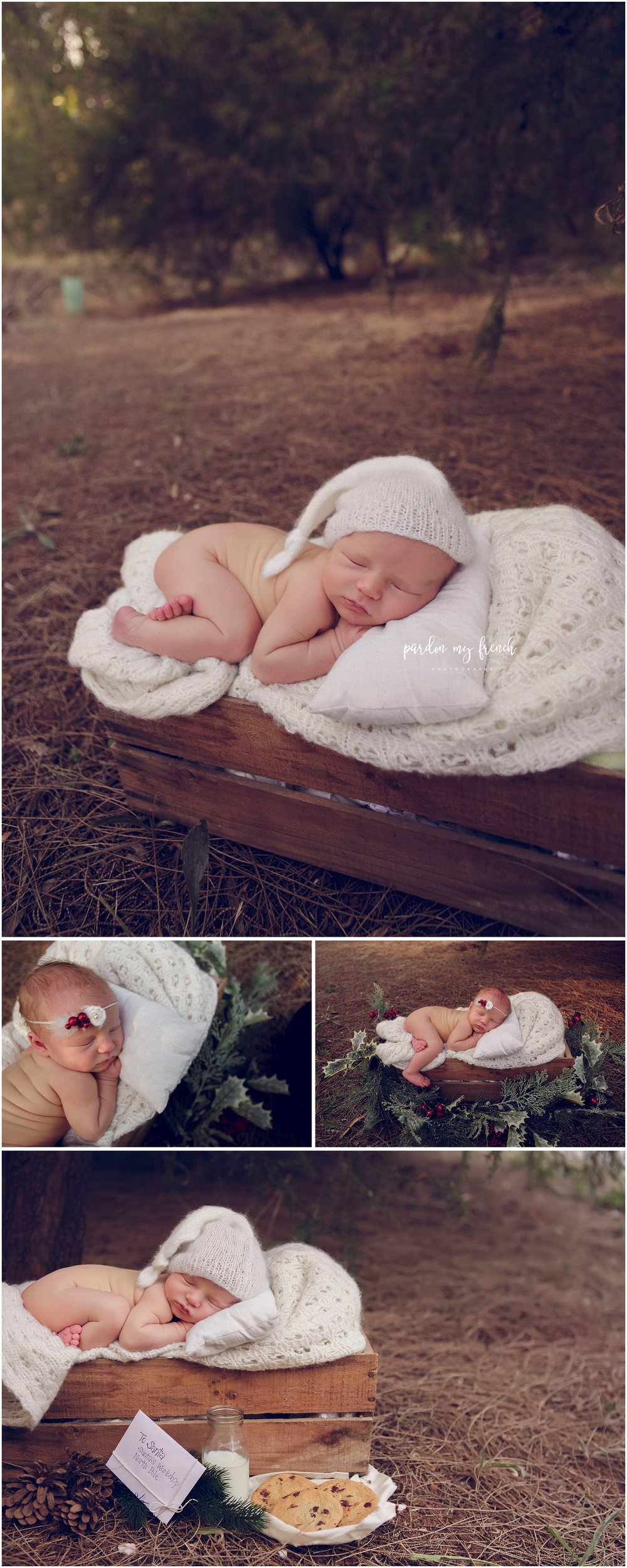Adelaide newborn Photographer Penny 1.jpg