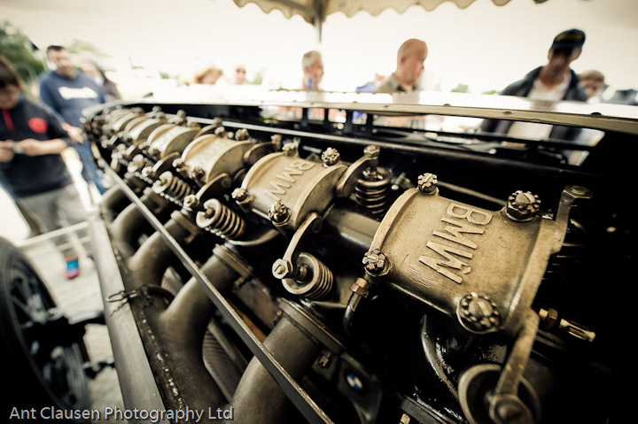 pageant of power, cholmondeley, 2010, photography, pics, blog, festival, event, photography