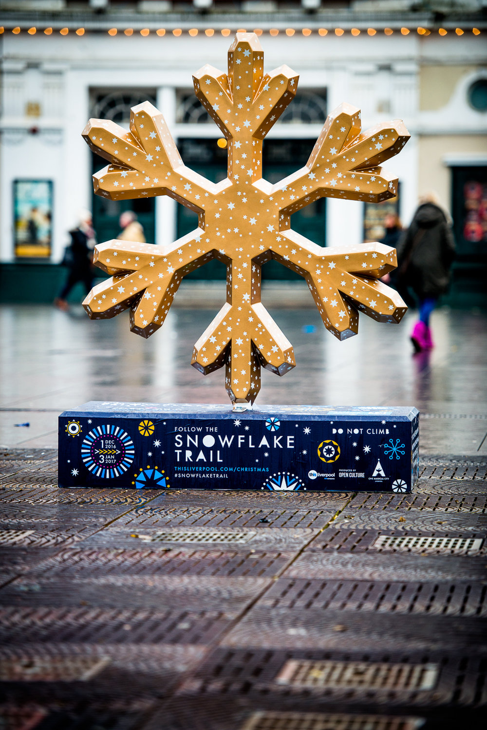 liverpool_snowflake_trail-8.jpg