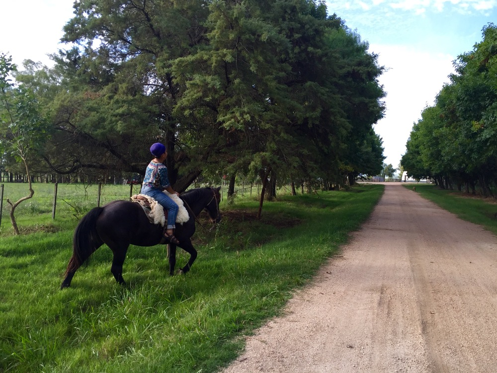 One of my favorite days in Uruguay was spent in the countryside, riding horses and drinking tea.