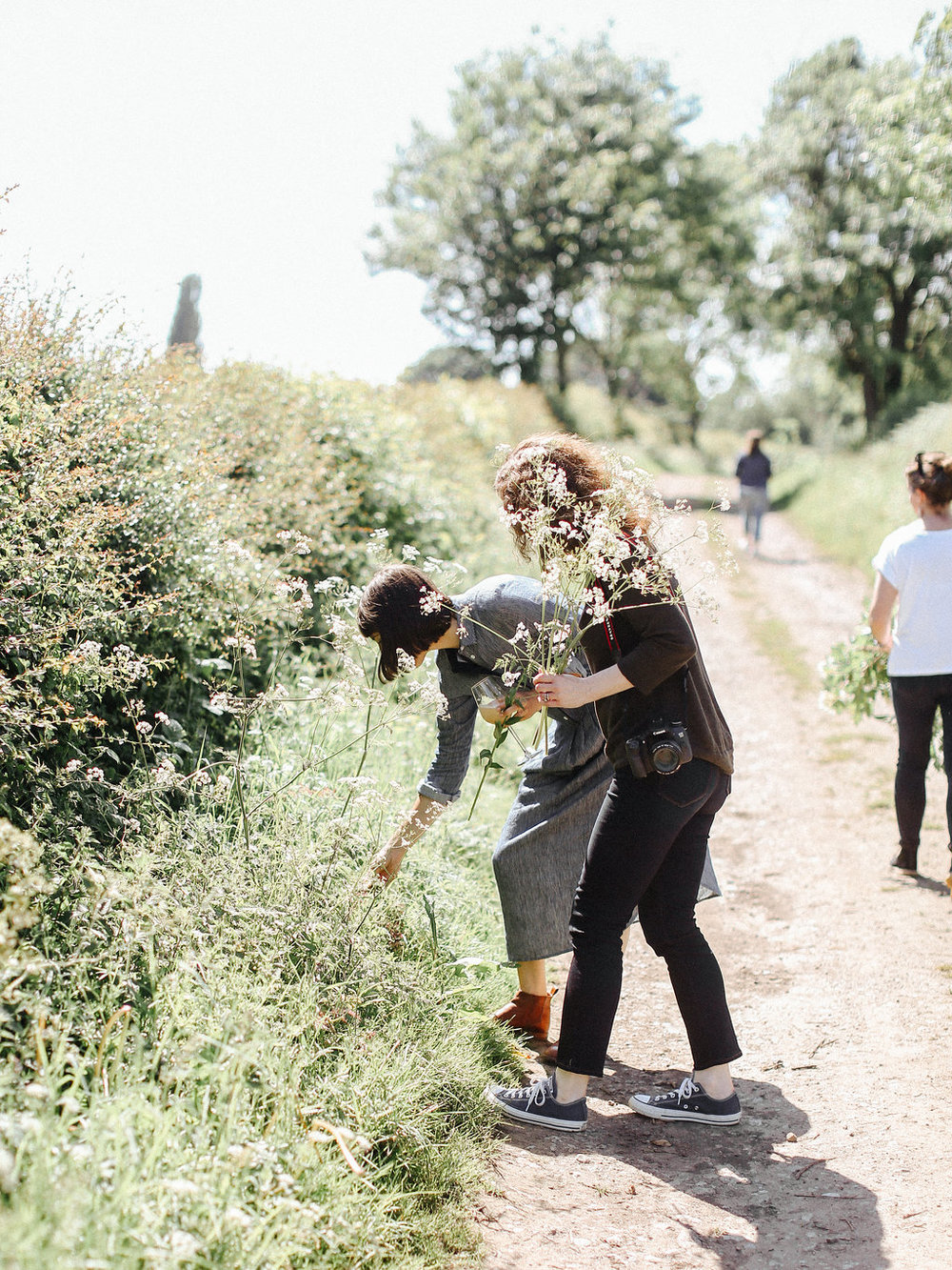 Hedgerow foraging with Sarah Winward