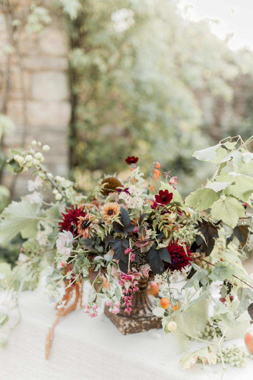 Image Naomi Kenton