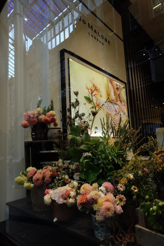 Firenza Flowers