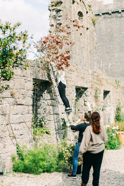 LargeUrnWorkshopwithFirenzaFlowers|Ireland|BelleandBeauFineArtPhotographyCopyright2018-226.jpg