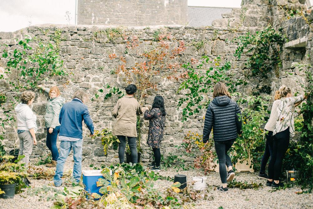 LargeUrnWorkshopwithFirenzaFlowers|Ireland|BelleandBeauFineArtPhotographyCopyright2018-229.jpg