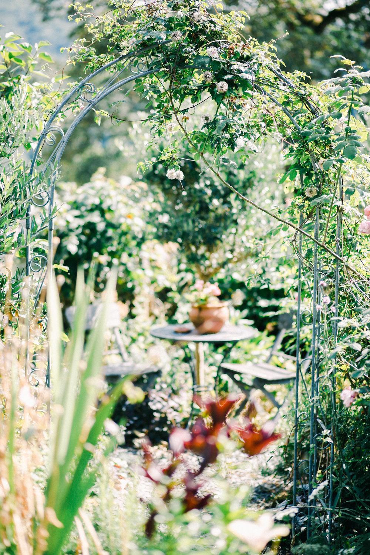 garden at Firenza Flowers