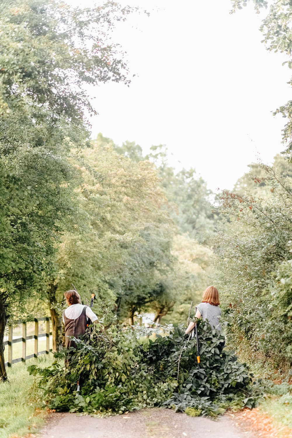 Fiona and Brigitte foraging. Image - Belle and Beau