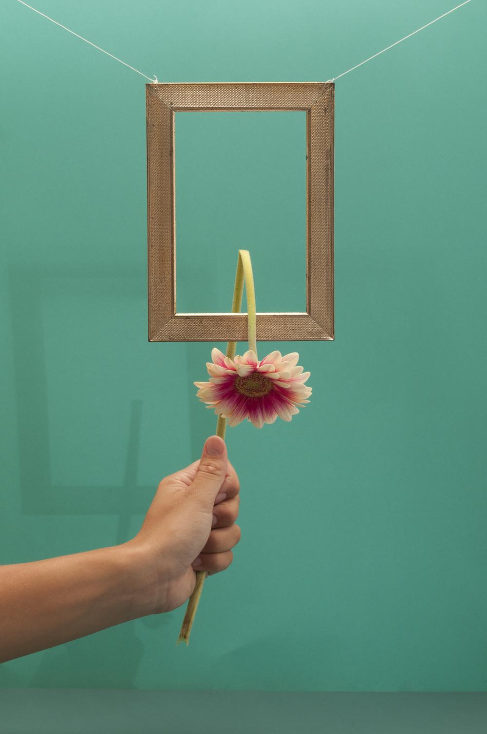 vreem(e)d - bloem-website.jpg