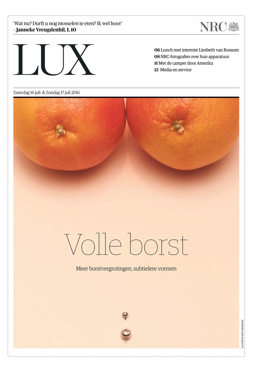 NRC Lux - cover website.jpg
