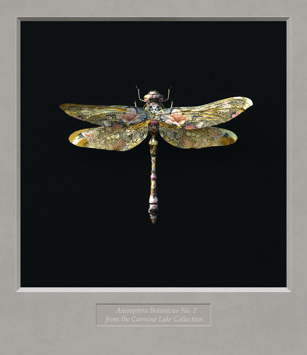 Gold_Floral_Dragonfly_in_Mount.jpg
