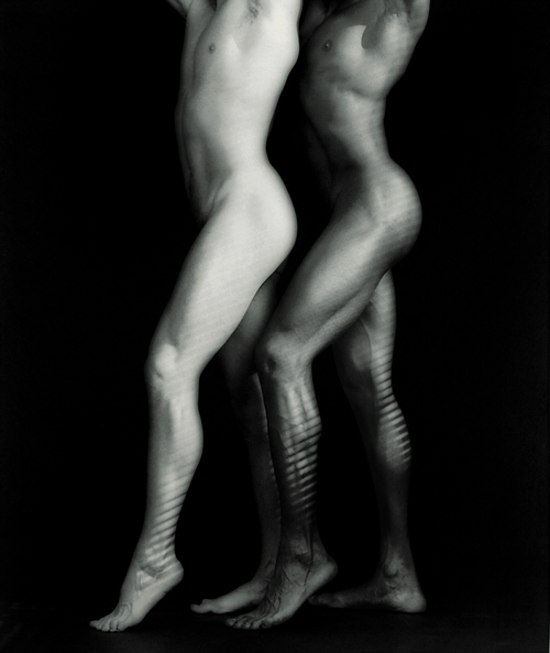 <h3>Mapplethorpe: Look at the Pictures</h3>