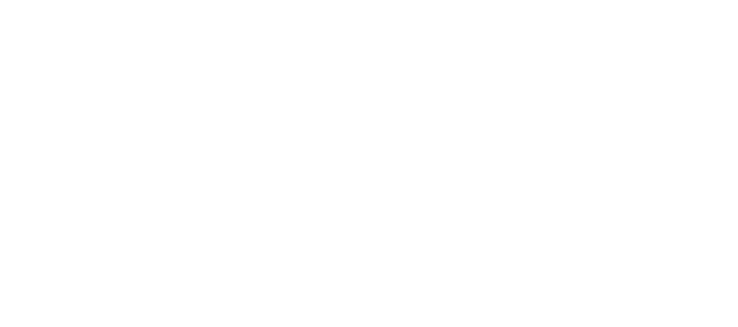 JIMMYS BURGER & CO.