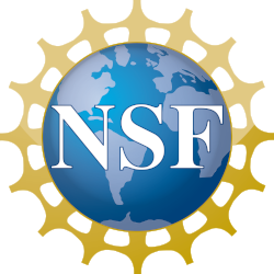 nsf-logo-no-background.png