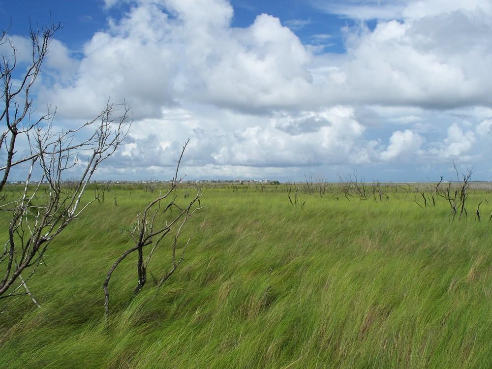 Gibbon Ne Nature Center