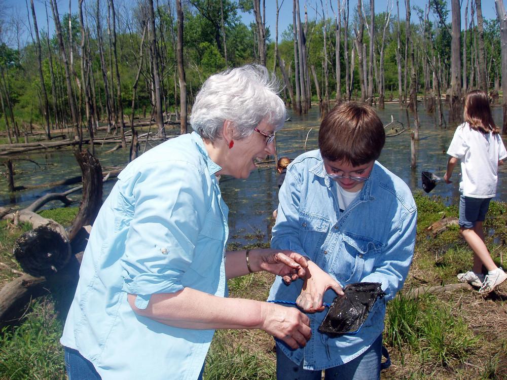 Margaret_wetlands.JPG