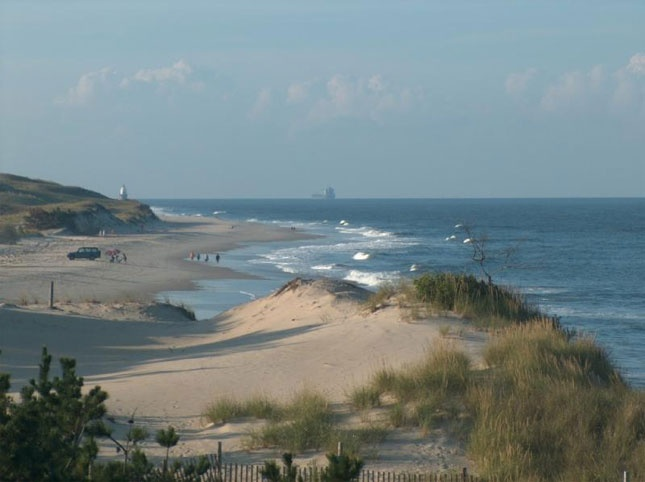 Herring Point, Cape Henlopen State Park