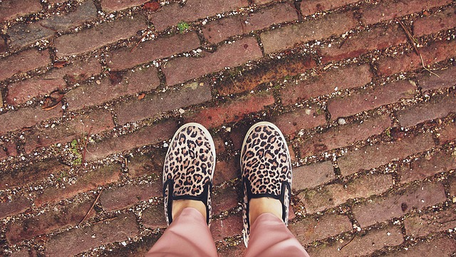 leopard print shoes.jpg
