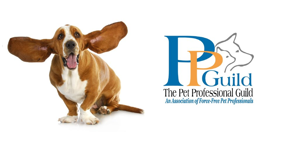 PET PROFESSIONAL GUILD   The Pet Professional Guild is a membership organization representing pet industry professionals who are committed to results based, science based force-free training and pet care. PPG Members Understand Force-Free to mean:  No Shock, No Pain, No Cho  ke, No Fear, No Physical Force,  No Compulsion Based Methods are employed to train or care for a pet.    FOR MORE INFORMATION:   CLICK HERE   COMPANY MESSAGE:   CLICK HERE