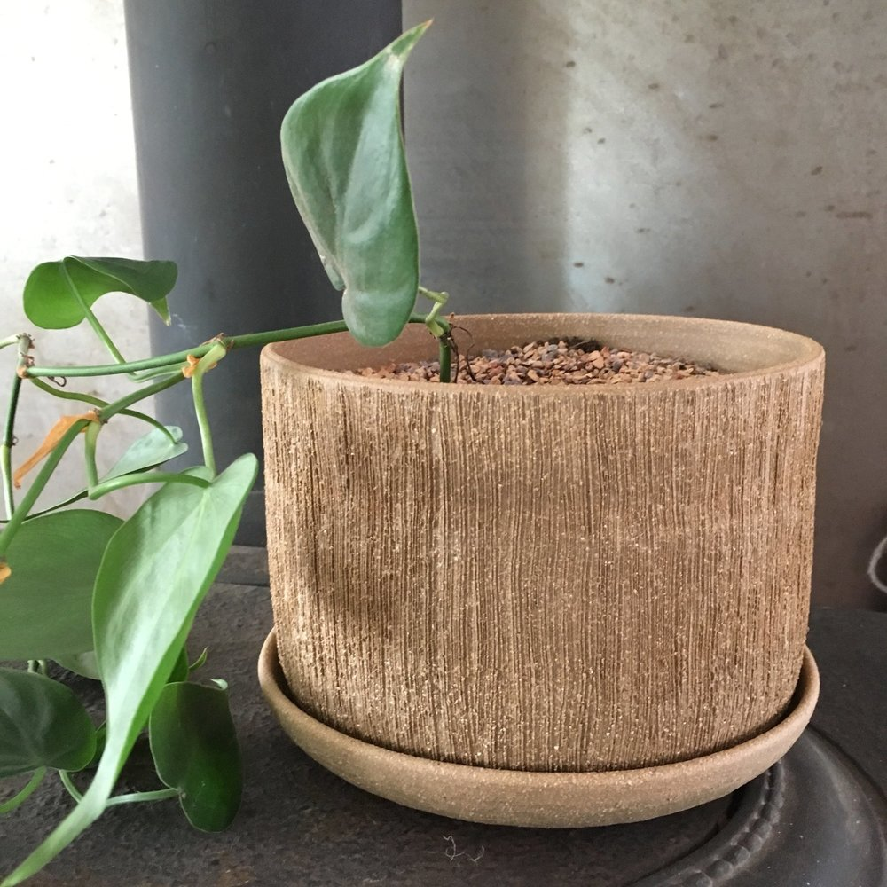 This earthy planter by  Held  is so pretty - get one for yourself too and have a planting party with your mom.