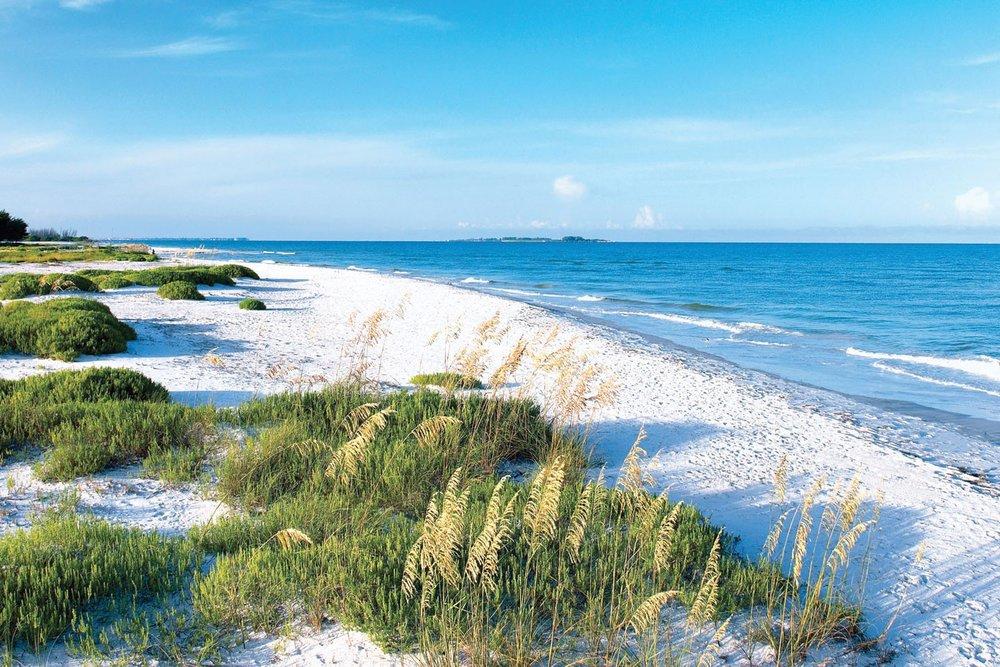 beaches-petersburg-ocean-warm-florida-nature-hotel-beach-fort-ramada-desoto-sand-animated-wallpaper-windows-7.jpg