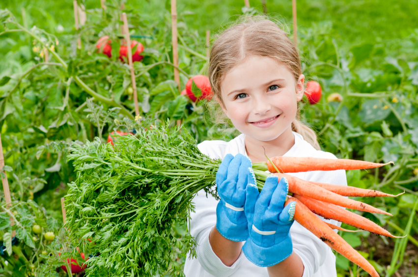 5-Tips-for-Growing-Your-Own-Organic-Food.jpg