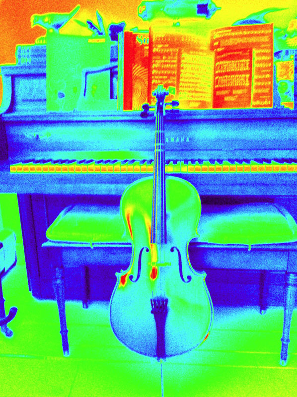 She took this picture of her cello... it's the size of a small guitar.