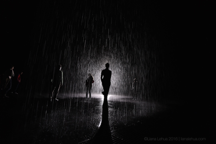 ©LIANA LEHUA 2016. ALL RIGHTS RESERVED. CANON 5D MARK III, CANON 16-35MM F/2.8L II, FOCAL LENGTH: 16MM, ISO 100, 1/30 SEC, F/2.8 RAIN ROOM, LA COUNTY MUSEUM OF ART