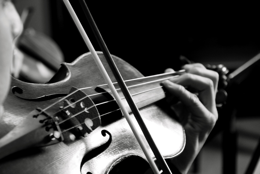 violin-photoVanessaBriceno.JPG