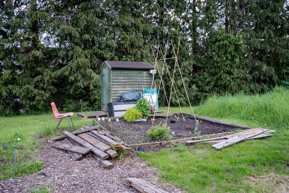 allotments-5.jpg