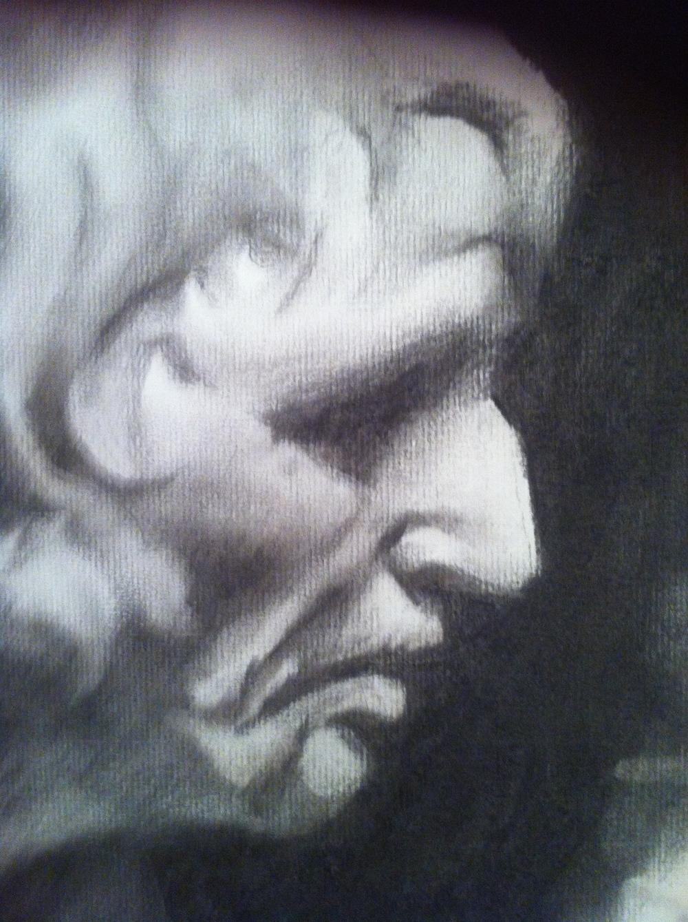 Bust of Seneca   Charcoal on paper