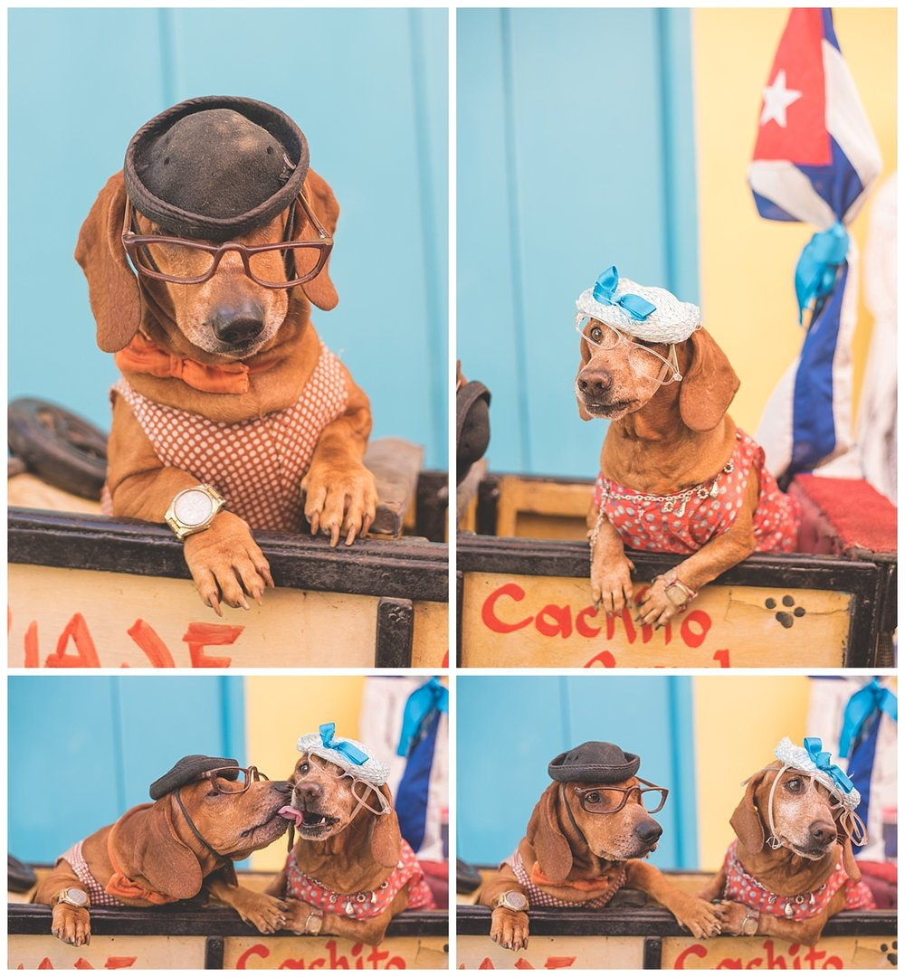 havana cuba blog_0118.jpg