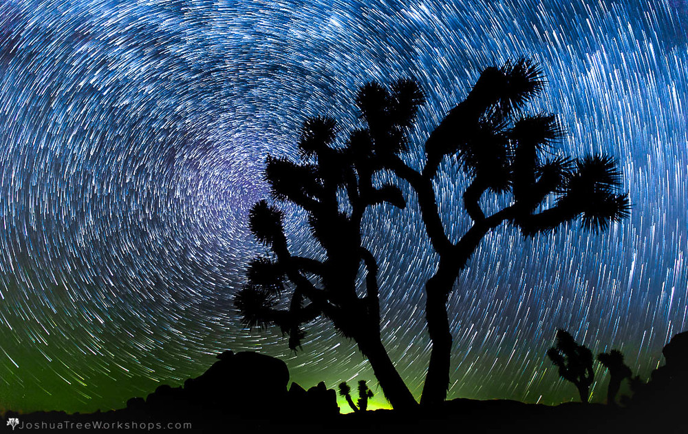 Top 10 Tips For Visiting Joshua Tree Joshua Tree Visitors Guide