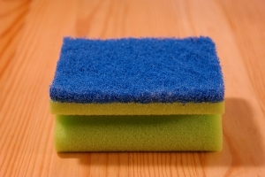 kitchen sponge.jpg
