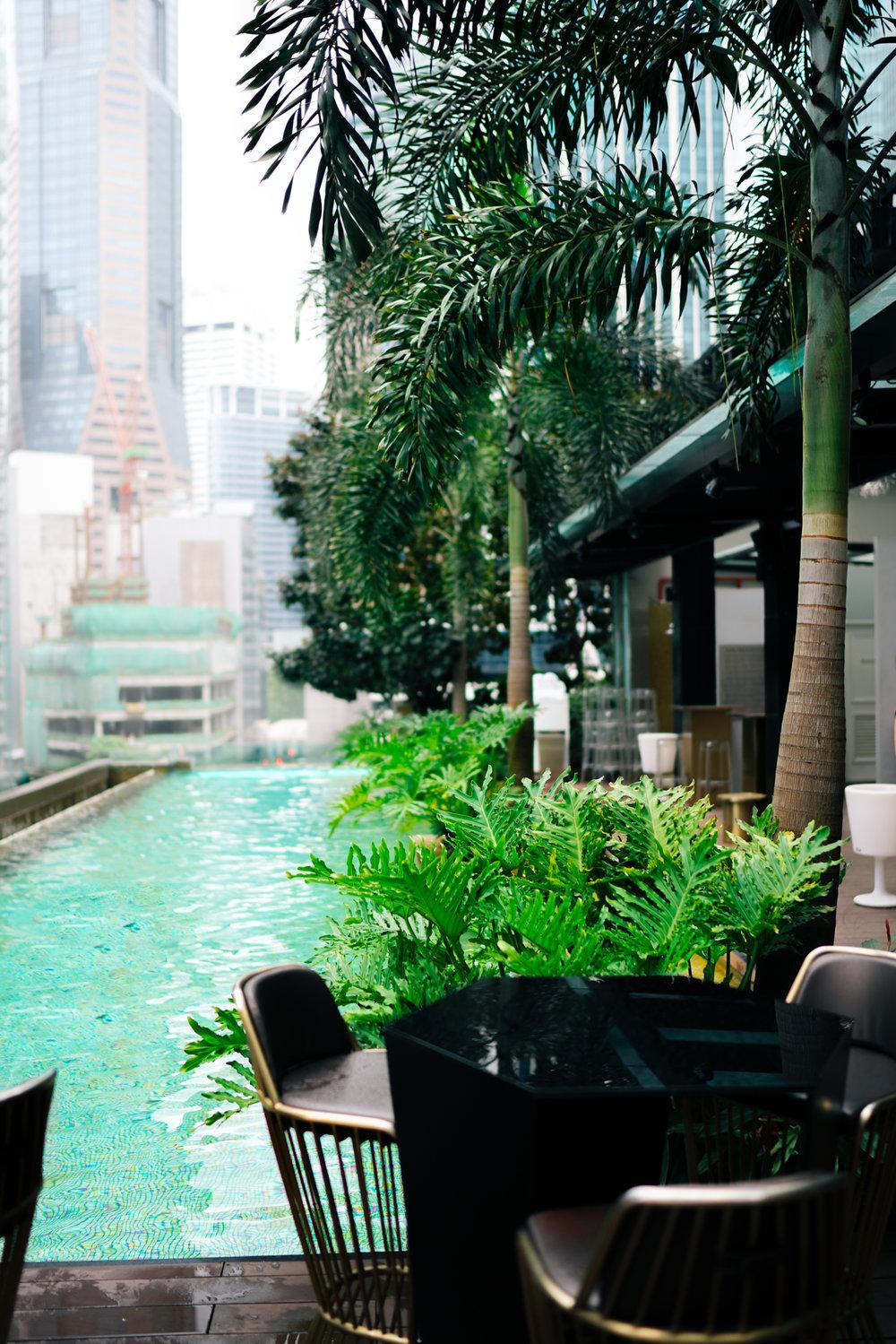 Pool at So Sofitel Singapore