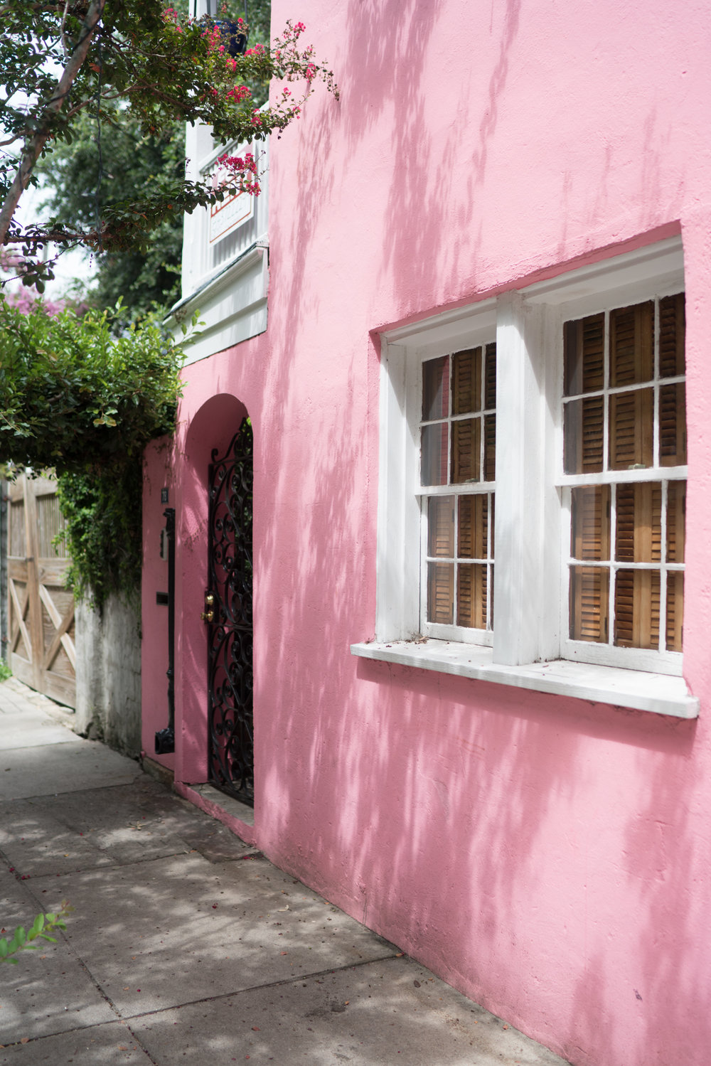 Charleston is so pretty in pink