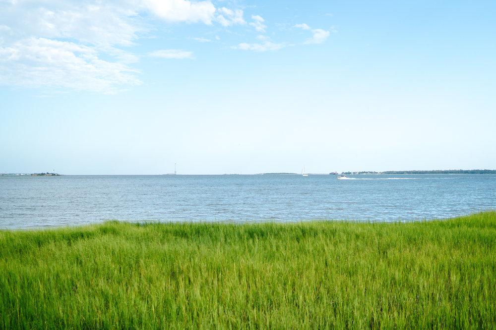 Charleston views