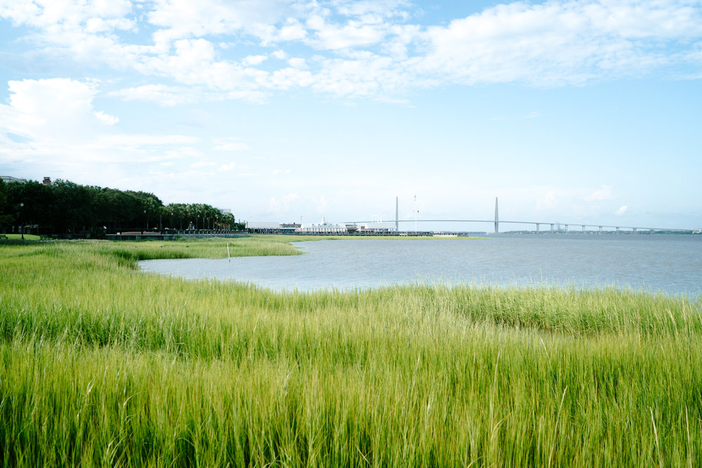 Best views in Charleston, South Carolina | Never Settle Travel