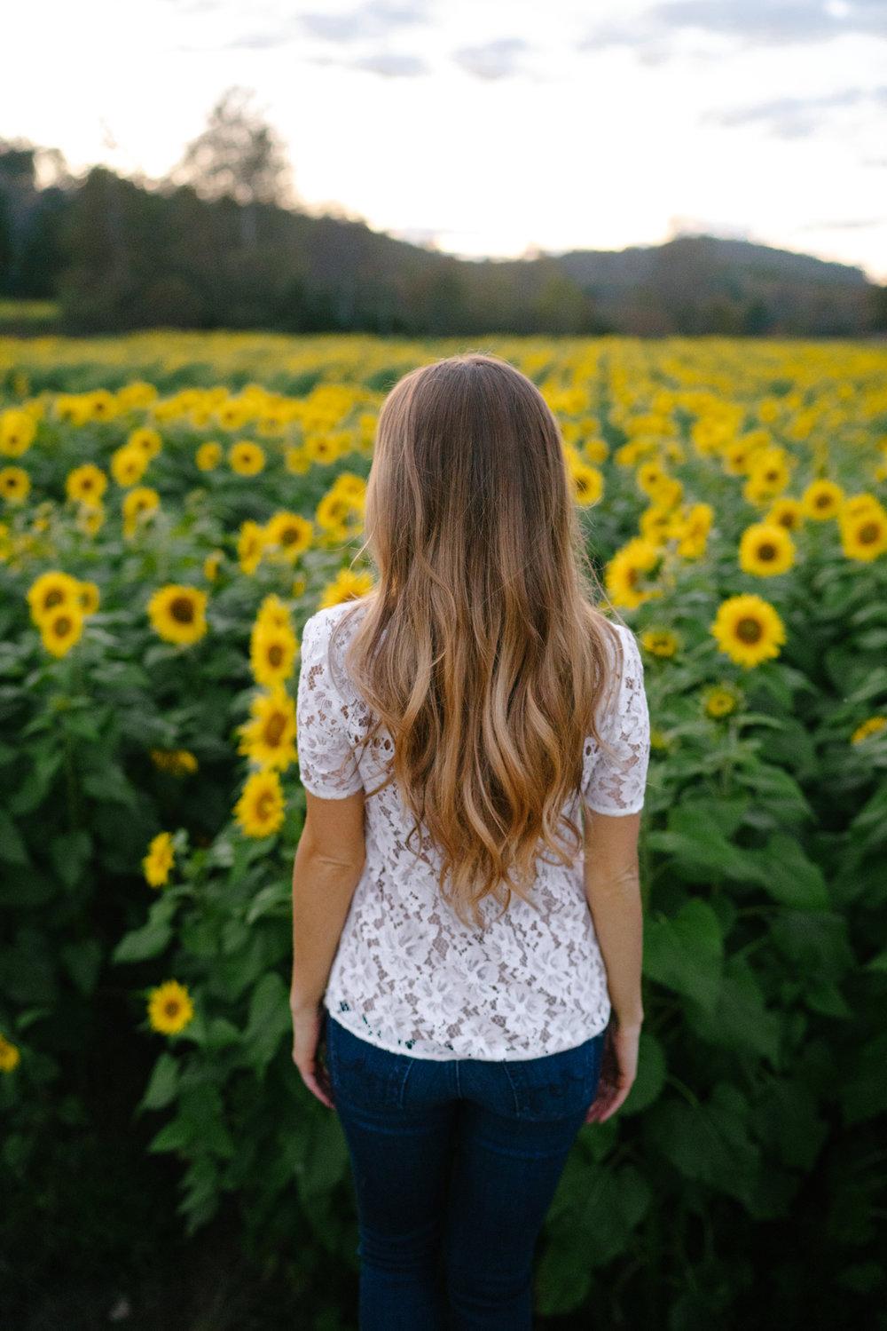 Sunflower fields near Atlanta | Never Settle Travel