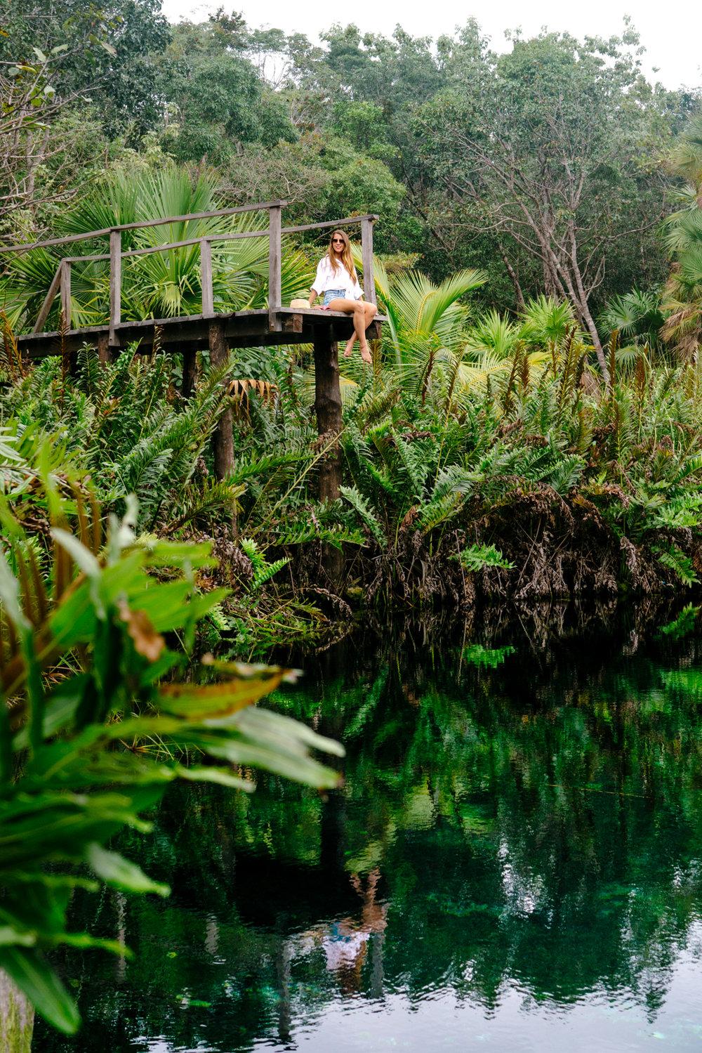 Cenote Cristal reflection