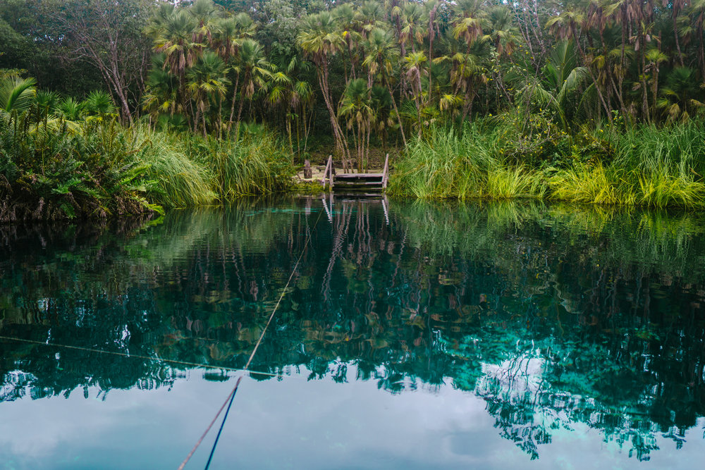 An entrance to Cenote Cristal