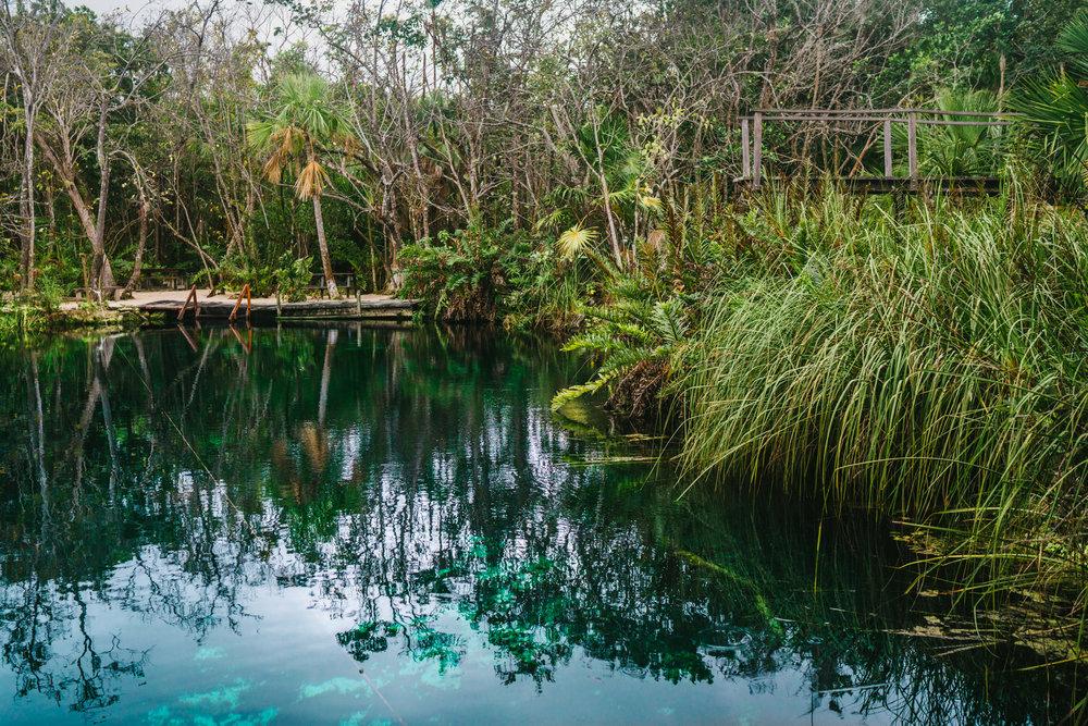 Cenote Cristal picnic tables