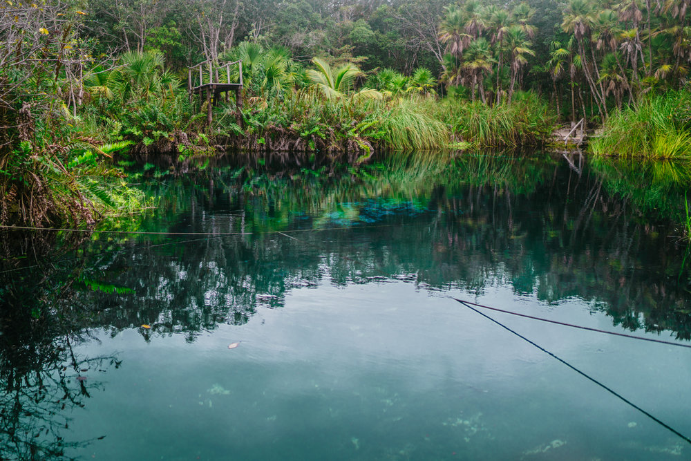 Cenote Cristal Tropical Oasis
