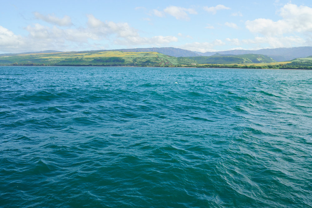 Southern coast of Kauai | Never Settle Travel
