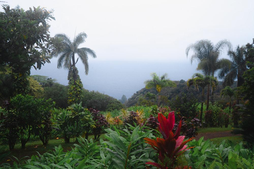 Garden of Eden Maui | Never Settle Travel