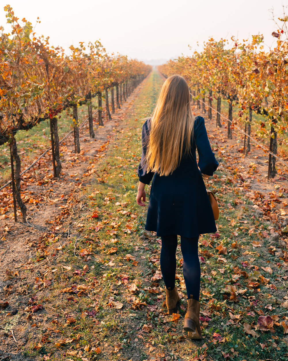 A guide to visiting California vineyards in the fall