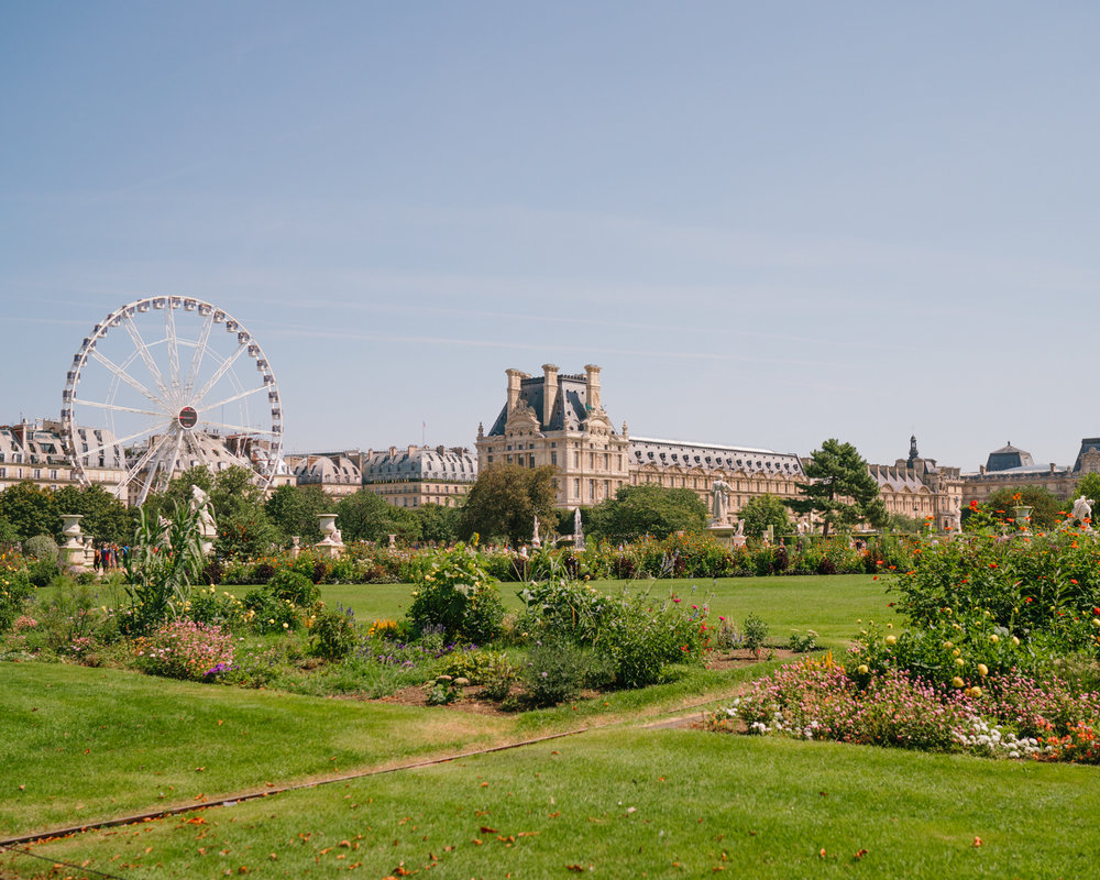 The Louvre from the Tuileries Gardens in Paris